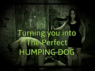 Turning you into the perfect humping dog